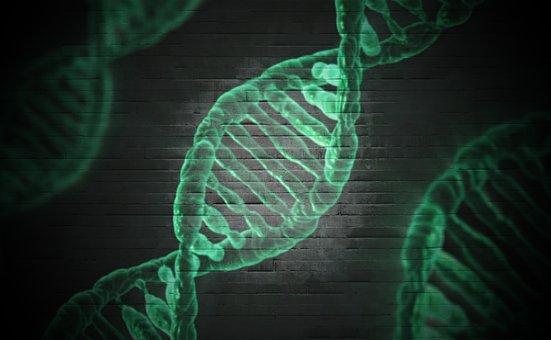 DNA hellix